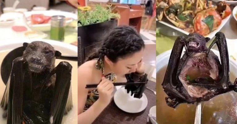 Những món ăn kinh dị tại Trung Quốc