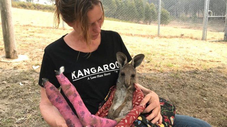Cứu thú hoang trong thảm họa cháy rừng ở Úc